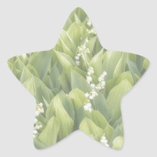 Adesivo Estrela Lírio do remendo da flor do vale na névoa