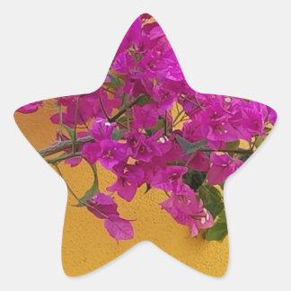 Adesivo Estrela Luz do sol amarela do arco da flor do rosa da