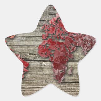 Adesivo Estrela madeira 9 do mapa do mundo