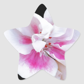 Adesivo Estrela Máscaras cor-de-rosa