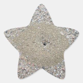 Adesivo Estrela Monte da formiga