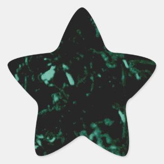 Adesivo Estrela Musgo verde da noite