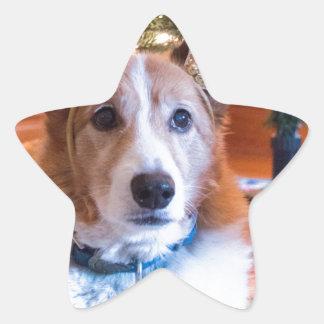 Adesivo Estrela Natal do Corgi de Galês do Pembroke