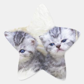 Adesivo Estrela Ninho com os quatro gatos de gato malhado novos em