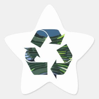 Adesivo Estrela Nós adore o ambiente verde do campeão nvn236 do