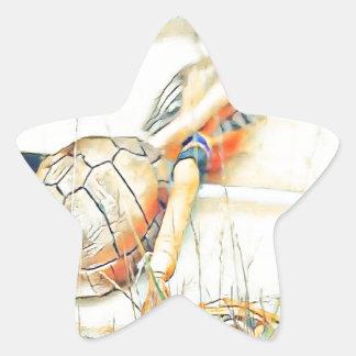 Adesivo Estrela O clã da tartaruga chocalha e rufa