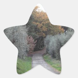Adesivo Estrela Paisagem rural com a estrada asfaltada no outono