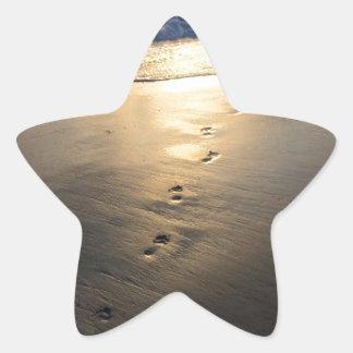 Adesivo Estrela Pegadas de desaparecimento