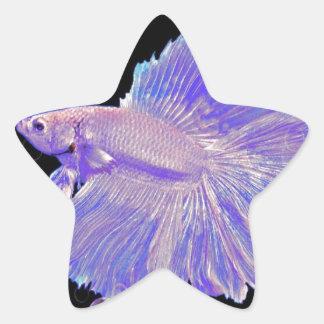 Adesivo Estrela Peixes de combate roxos iridescentes
