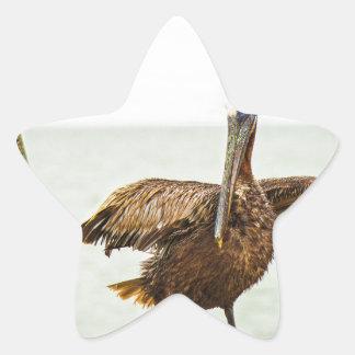 Adesivo Estrela Pelicanos empoleirados em cargos