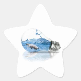 Adesivo Estrela Polar