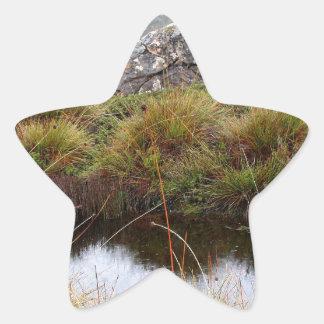 Adesivo Estrela Reflexões enevoadas da manhã, Tasmânia, Austrália