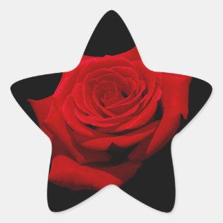 Adesivo Estrela Rosa vermelha no fundo preto