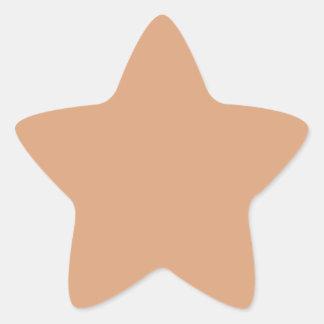 Adesivo Estrela Saco de papel