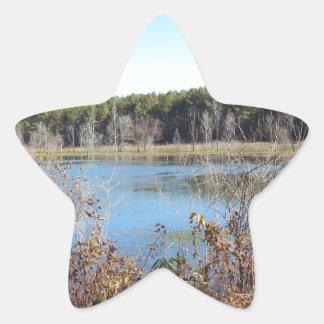 Adesivo Estrela Santuário de pássaro do lago sams