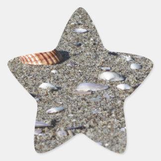 Adesivo Estrela Seashells na areia. Fundo da praia do verão