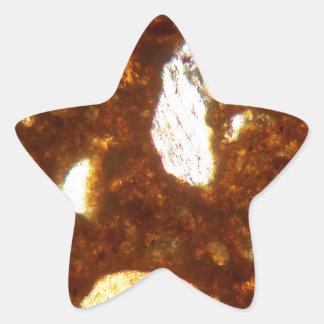 Adesivo Estrela Seção fina de um tijolo sob o microscópio
