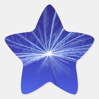 Adesivo Estrela Semente de Dandilion