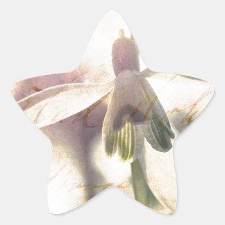 Adesivo Estrela Snowdrop 01.01q lírico