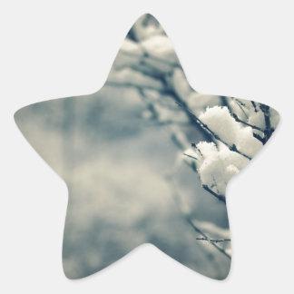 Adesivo Estrela Tapete do rato nevado da árvore
