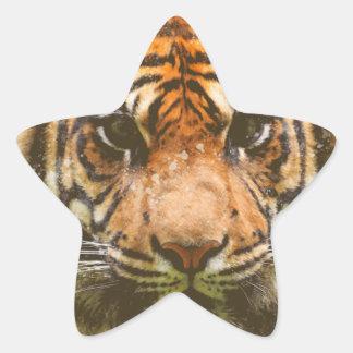 Adesivo Estrela Tigre