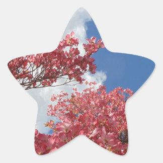 Adesivo Estrela Torrente das flores