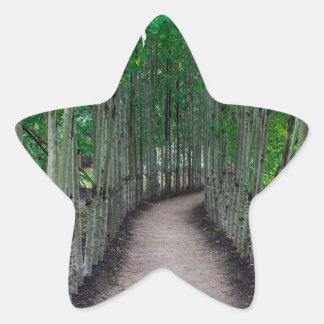 Adesivo Estrela Trajeto do parque