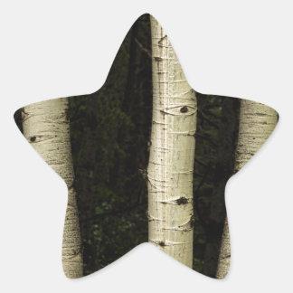 Adesivo Estrela Três colunas da floresta