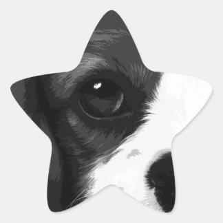 Adesivo Estrela Um spaniel de rei Charles descuidado preto e