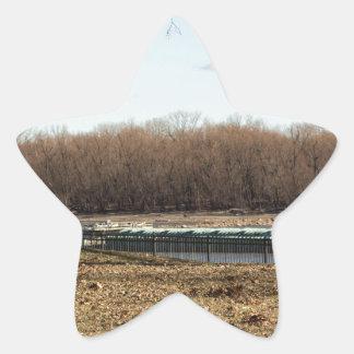 Adesivo Estrela Vida do rio