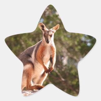 Adesivo Estrela Wallaby de rocha amarelo-footed australiano