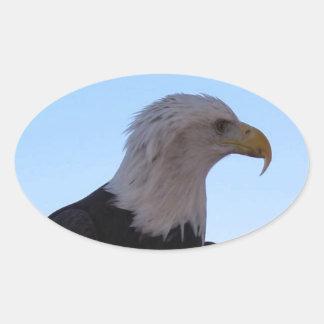 Adesivo Oval Águia americana