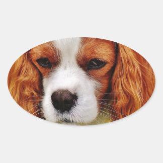 Adesivo Oval Animal de animal de estimação engraçado descuidado