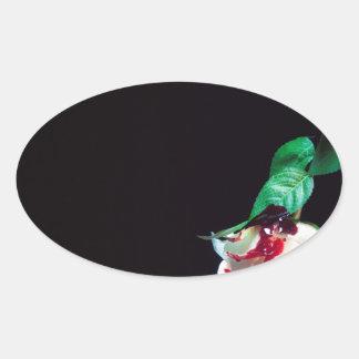 Adesivo Oval Aumentou o lado branco do vermelho do sangue