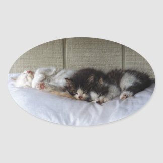 Adesivo Oval Belas Adormecidas