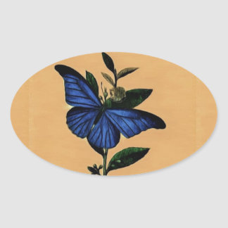 Adesivo Oval Borboleta Azul