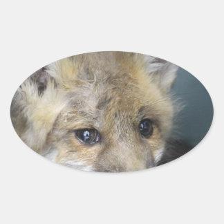 Adesivo Oval Capa de telefone do Fox