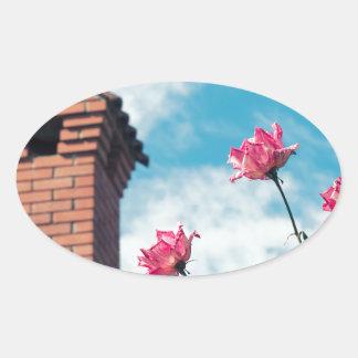 Adesivo Oval Chaminé e rosas selvagens