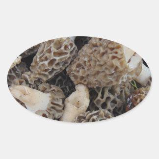 Adesivo Oval Cogumelos do Morel