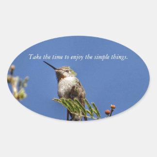 Adesivo Oval Colibri no ramo por SnapDaddy