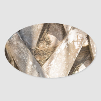 Adesivo Oval Do abstrato ascendente próximo do detalhe da