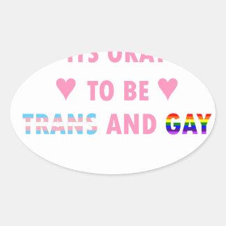 Adesivo Oval É aprovado ser o transporte e o gay (v1)