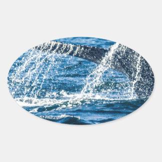 Adesivo Oval Estado de Washington da baleia de Humpback