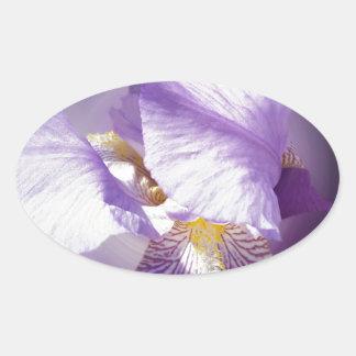 Adesivo Oval flor roxa da íris