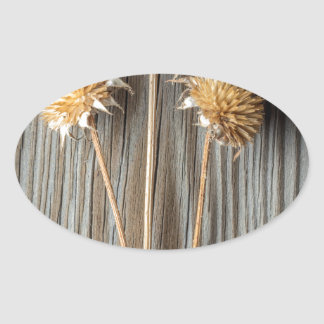 Adesivo Oval Flor secada de Sun