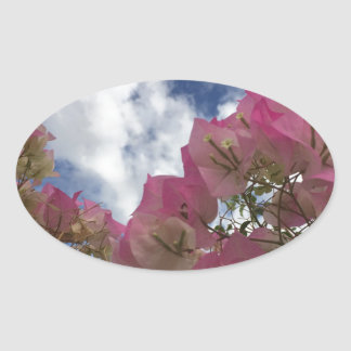 Adesivo Oval flores cor-de-rosa contra um céu azul