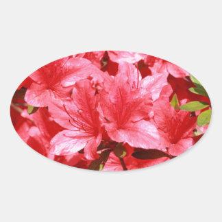Adesivo Oval flores do vermelho da azálea