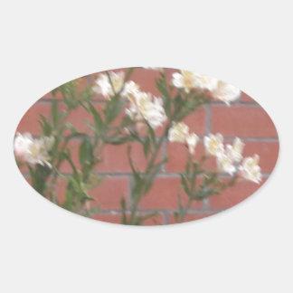 Adesivo Oval Flores no tijolo