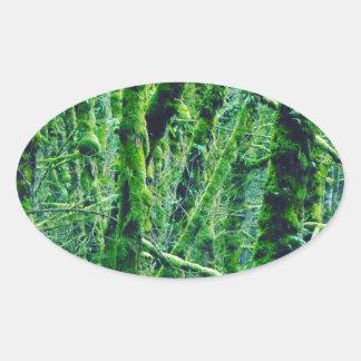 Adesivo Oval Floresta verde