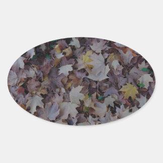 Adesivo Oval Folhas de bordo caídas